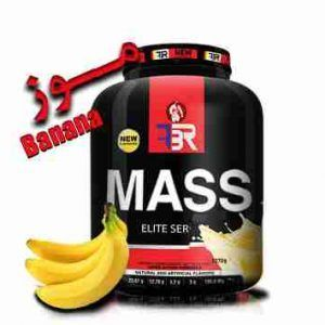 FBR Gainer Mass 2600 gr